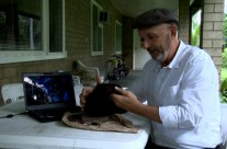 Reflections: Hatband analysis